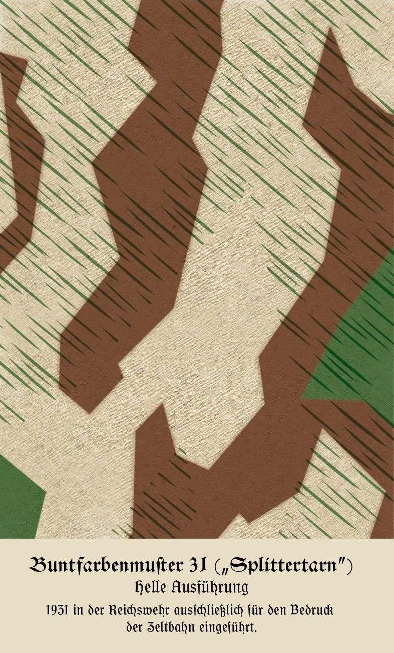 L'influence du camouflage allemand ww2, de nos jours. Buntfa10