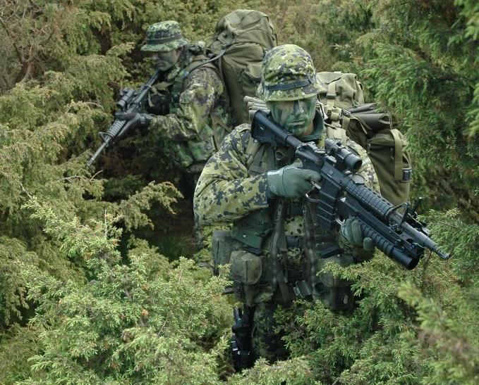 L'influence du camouflage allemand ww2, de nos jours. Hjemme10