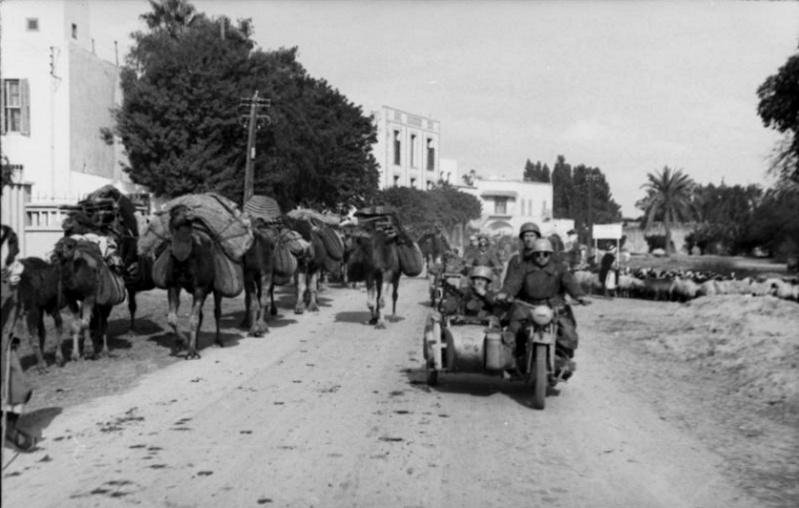 Les soldats de la Luftwaffe en Afrique - Page 2 T10