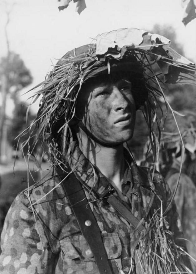 L'influence du camouflage allemand ww2, de nos jours. Tgrtb110
