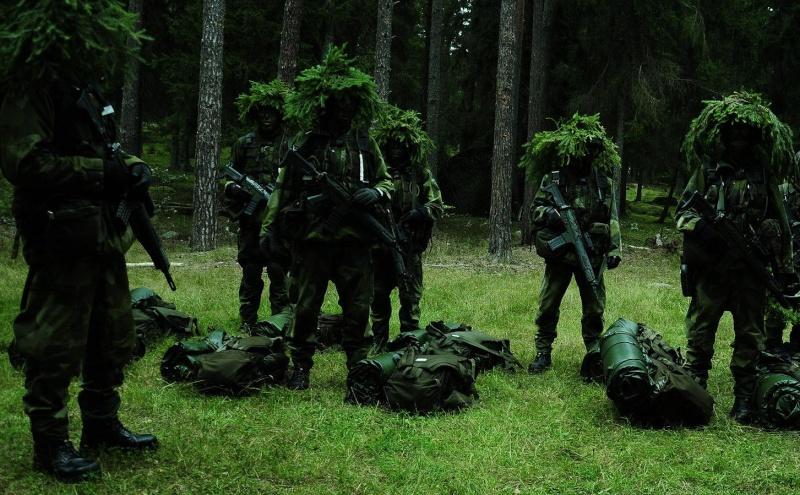 L'influence du camouflage allemand ww2, de nos jours. Zbwi5d10