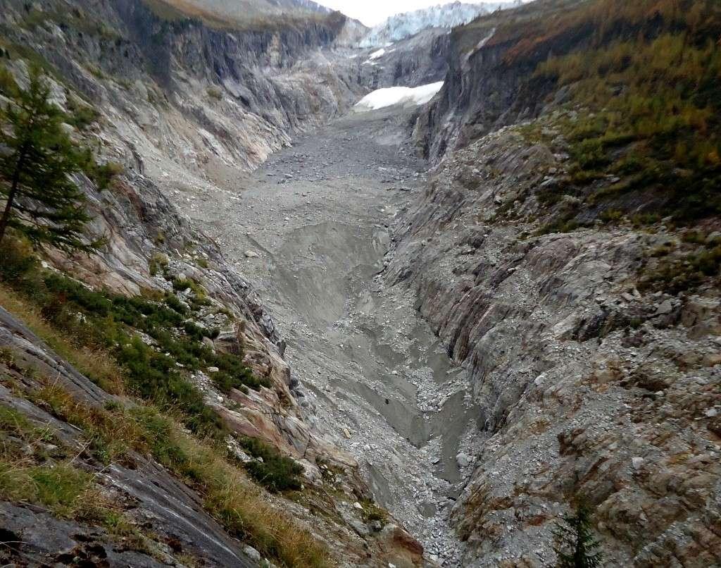 Le glacier d'Argentière - Page 4 Dsc02113