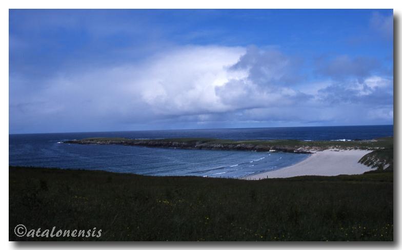 Retour sur les îles Shetland (juillet 2001) P_sche12