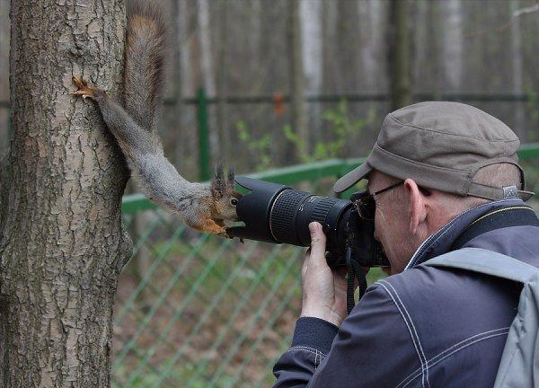 Les meilleures photos humour/tendresse animaux!  Ecureu10