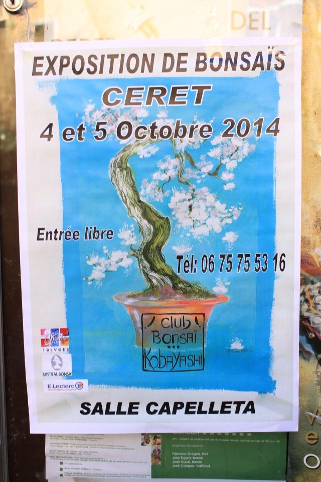 Ceret (66) 4 et 5 octobre 2014 Img_3210