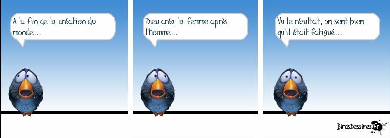 Série d'images amusantes - 24. Oiseau12