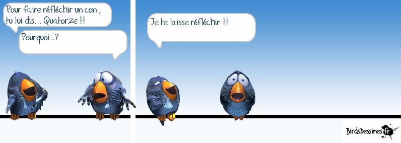 Série d'images amusantes - 24. Oiseau13