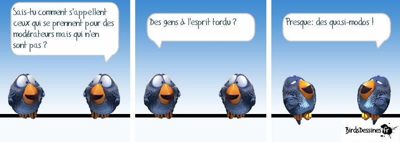 Série d'images amusantes - 24. Oiseau15