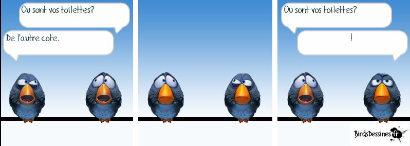 Série d'images amusantes - 24. Oiseau16
