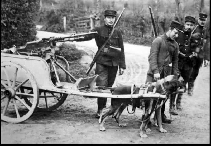 Photos rares de la Grande Guerre, seasons 2. 3910