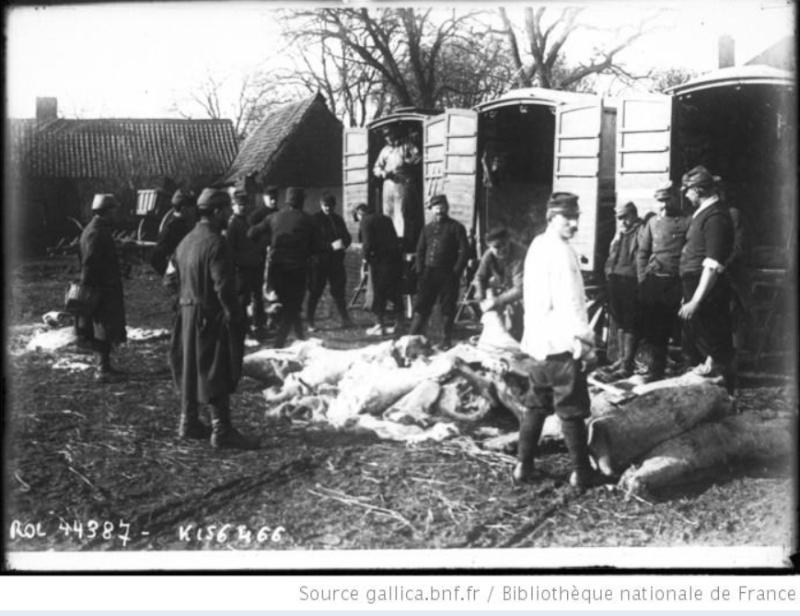 342 photos inédites de la Grande guerre !!! Gg18310