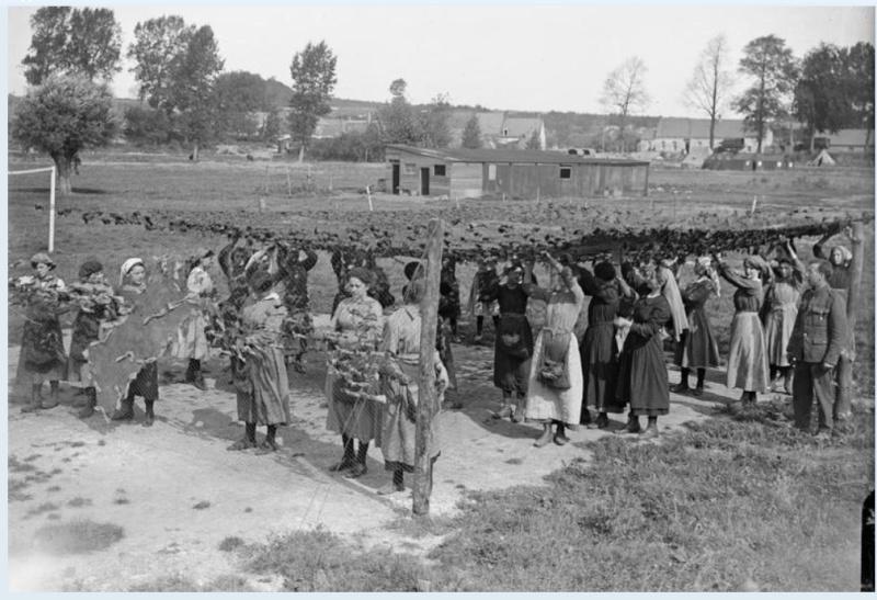 342 photos inédites de la Grande guerre !!! Gg29711