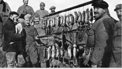 342 photos inédites de la Grande guerre !!! Gg32310