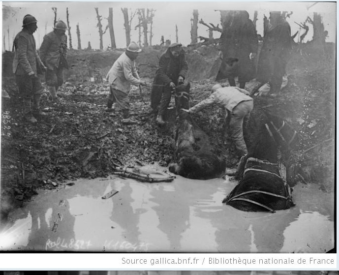 342 photos inédites de la Grande guerre !!! Gg3610