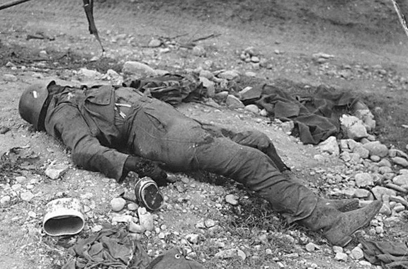 La bataille de Montélimar, août 1944. M810