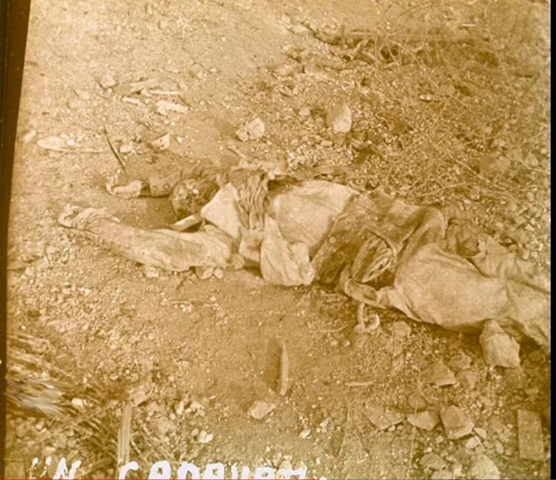 Photos rares du net 1914-1918. - Page 2 P2210