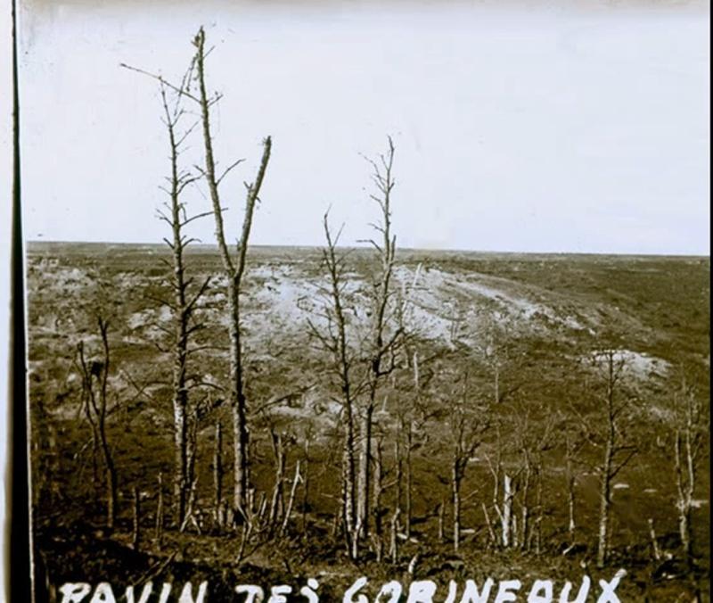 Photos rares du net 1914-1918. - Page 2 P2410