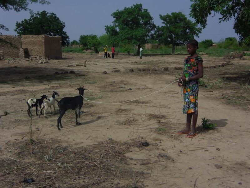 Parrainage d'enfants à l'étranger (Liens en p1) Kouma_11
