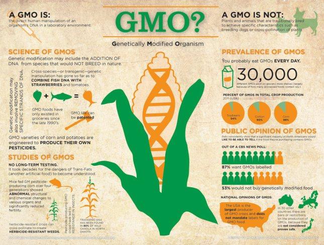 OGM : L'ADN des cultures génétiquement modifiées est transféré aux humains qui les mangent. 5cce3-10