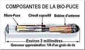 """Les puces RFID implantées sont de plus en plus vues comme """"cool"""", """"branchées"""" (sic) Bio-pu10"""
