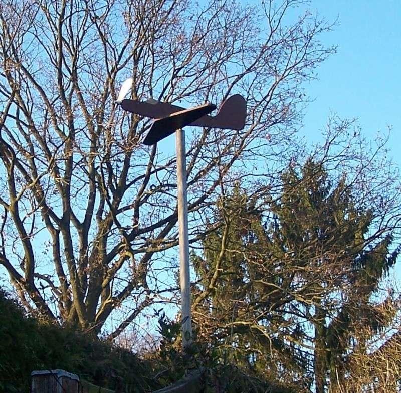Windanzeiger als Flugzeug 100_7710