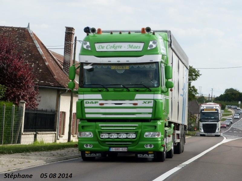 De Cokere-Maes  (Pittem) P1260118