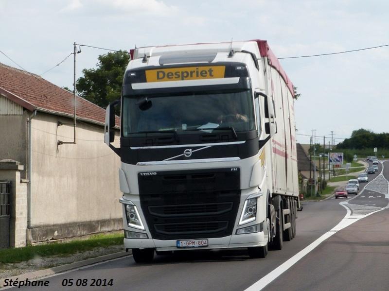 Despriet  (Harelbeke) P1260119