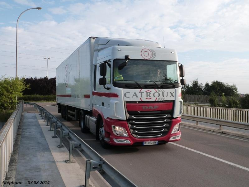 Catroux (Fossé, 41) - Page 3 P1260122