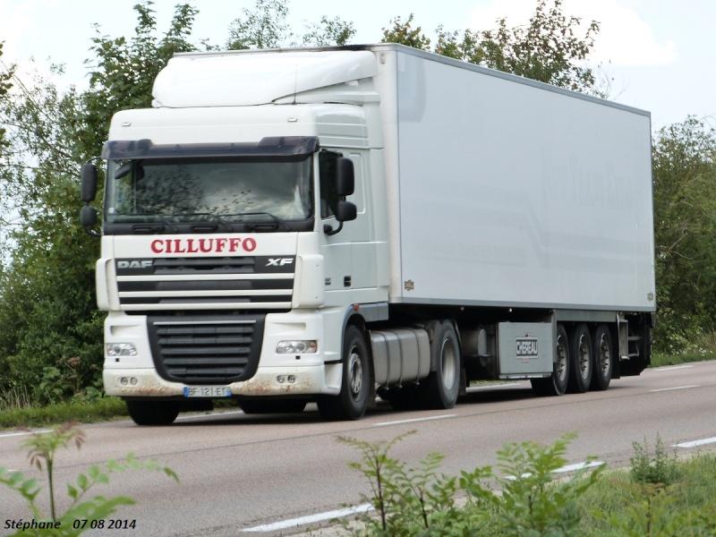 Cilluffo (Marolles, 51) P1260457