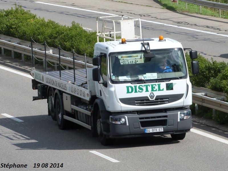 Distel (Brumath) (67) P1260636