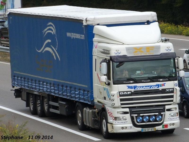 Tolean Tir P1280017