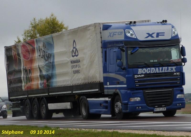 Bogdalilex  (Rucar Arges) P1280460