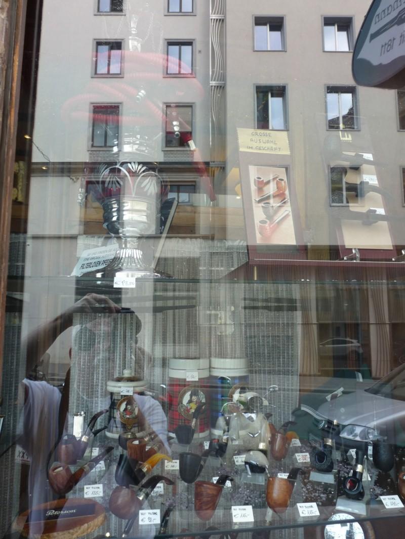 Les civettes de Vienne (Autriche) P1170633