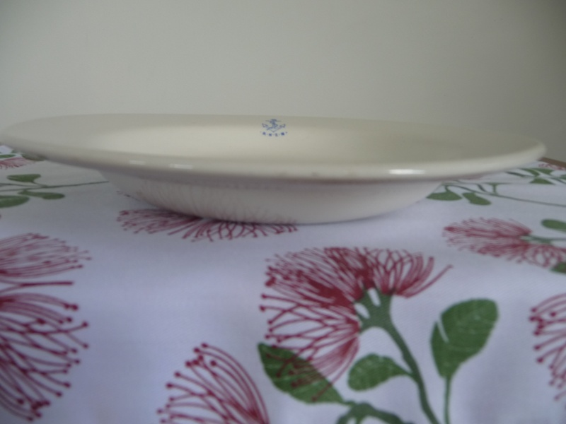 808/10 Navy Plate Vitrified is a 4646 P1050411
