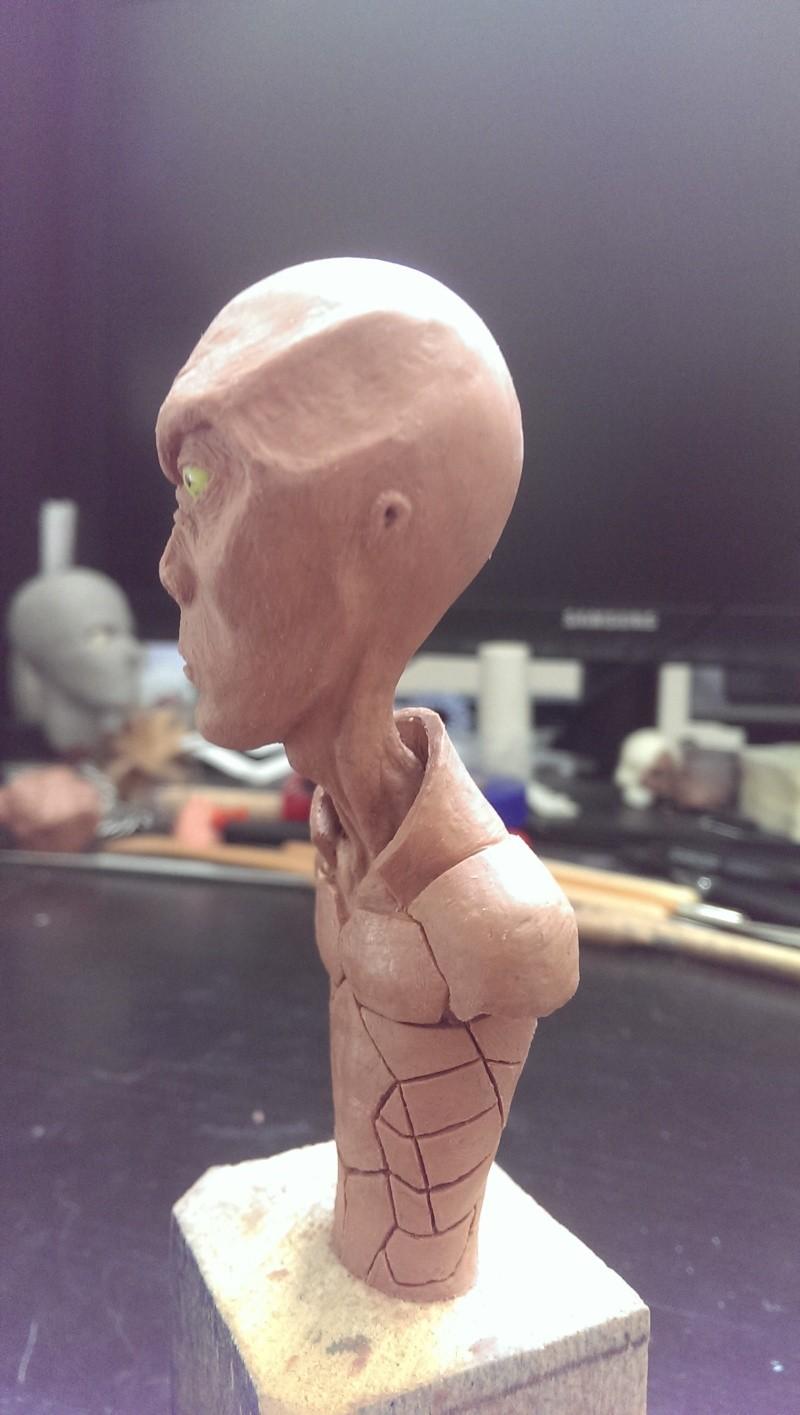 Buste extraterrestre Imag0711