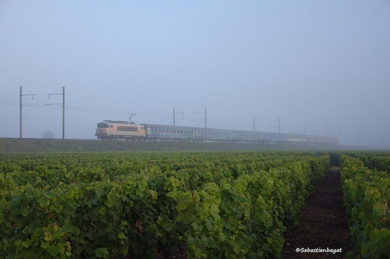 Photos et vidéos de la ligne Bordeaux - Toulouse - Narbonne - Sète (Fil 3) - Page 26 _dsc8110
