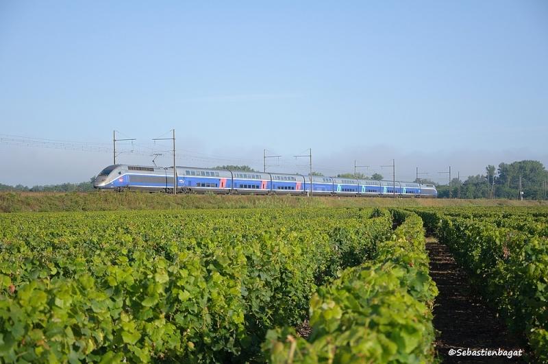 Photos et vidéos de la ligne Bordeaux - Toulouse - Narbonne - Sète (Fil 3) - Page 26 _dsc8111