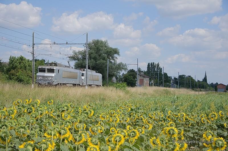 Photos et vidéos de la ligne Bordeaux - Toulouse - Narbonne - Sète (Fil 3) - Page 23 Tm_73110