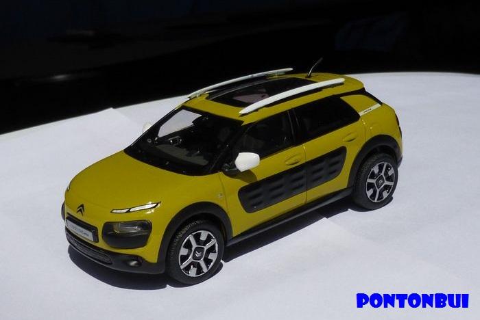 03 - Citroën ( Les Modernes Post-1990 )  Dscn8818