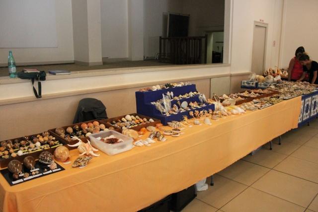 2014 Bourse de Mérignac - 20 & 21 Septembre 0610