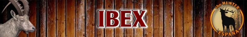 TOP 5 Alpine Ibex // Ibex Alpino I2ontc11