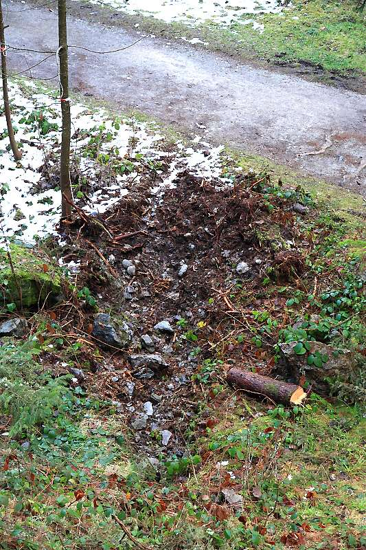 Eboulements et autres glissements dans la vallée - Page 3 Img_0211