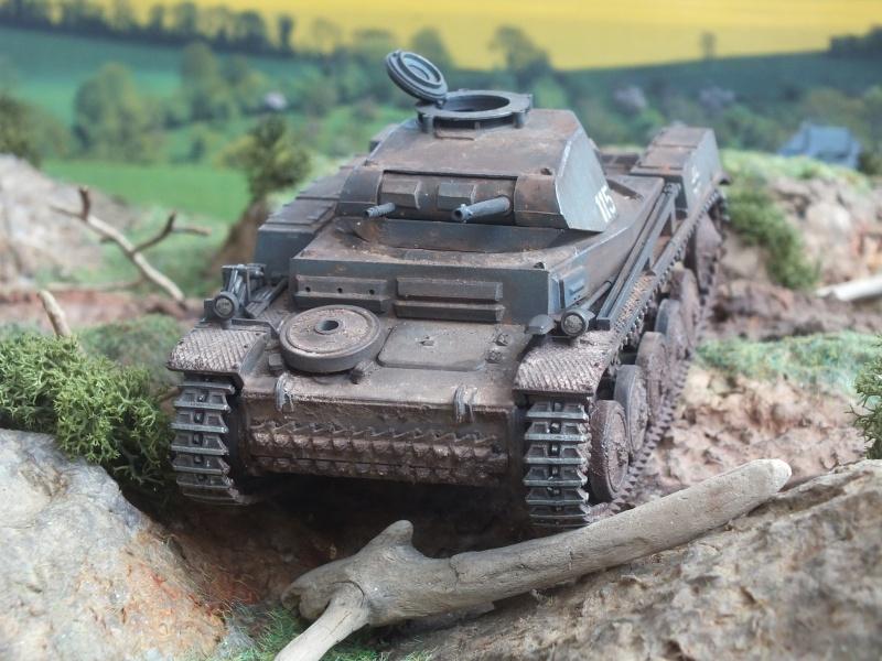 Panzer II Ausf. F unité inconnue,  en France , quelque part en Bretagne , printemps 1943. Dscf4721