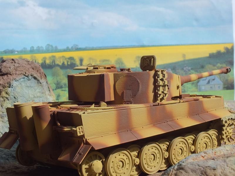 Tiger I Late version ,tamiya 1/35 (début de patine) Dscf5844