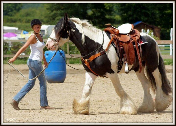 Journée western au village équestre des Moutats (03) 19_jui13