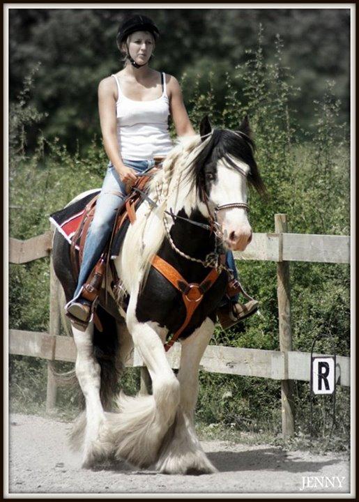 Journée western au village équestre des Moutats (03) 19_jui20