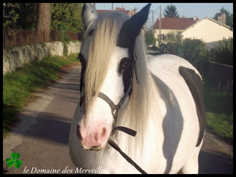 Domaine des Merveilles 31_oct23