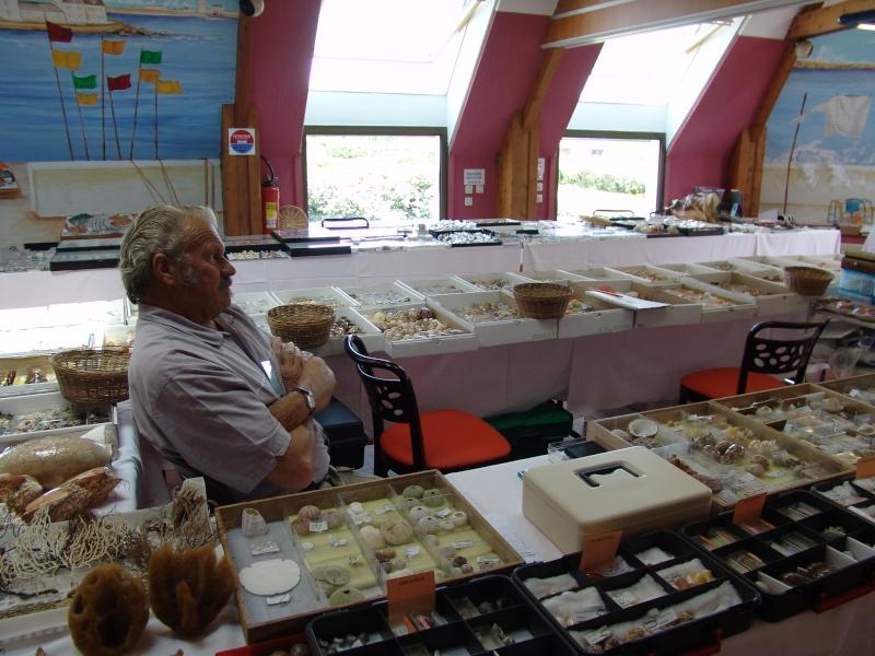2014 Bourse de Pouldreuzic - 2 & 3 aout - Finistère - Baie d'Audierne - Page 2 Dsc04714