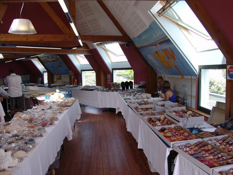 2014 Bourse de Pouldreuzic - 2 & 3 aout - Finistère - Baie d'Audierne - Page 2 Dsc04715
