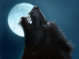 Les Concepts Moon2011
